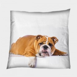Декоративна възглавница Английски булдог - British Bulldog