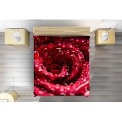Шалте Роза - Rose