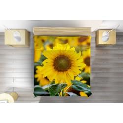 Шалте Слънчогледи - Sunflowers