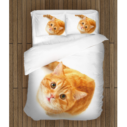Спално бельо 3D със завивка Рижава котка - Reddish Cat